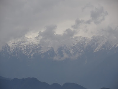 View of Kanchenjunga from Barsey in the afternoon