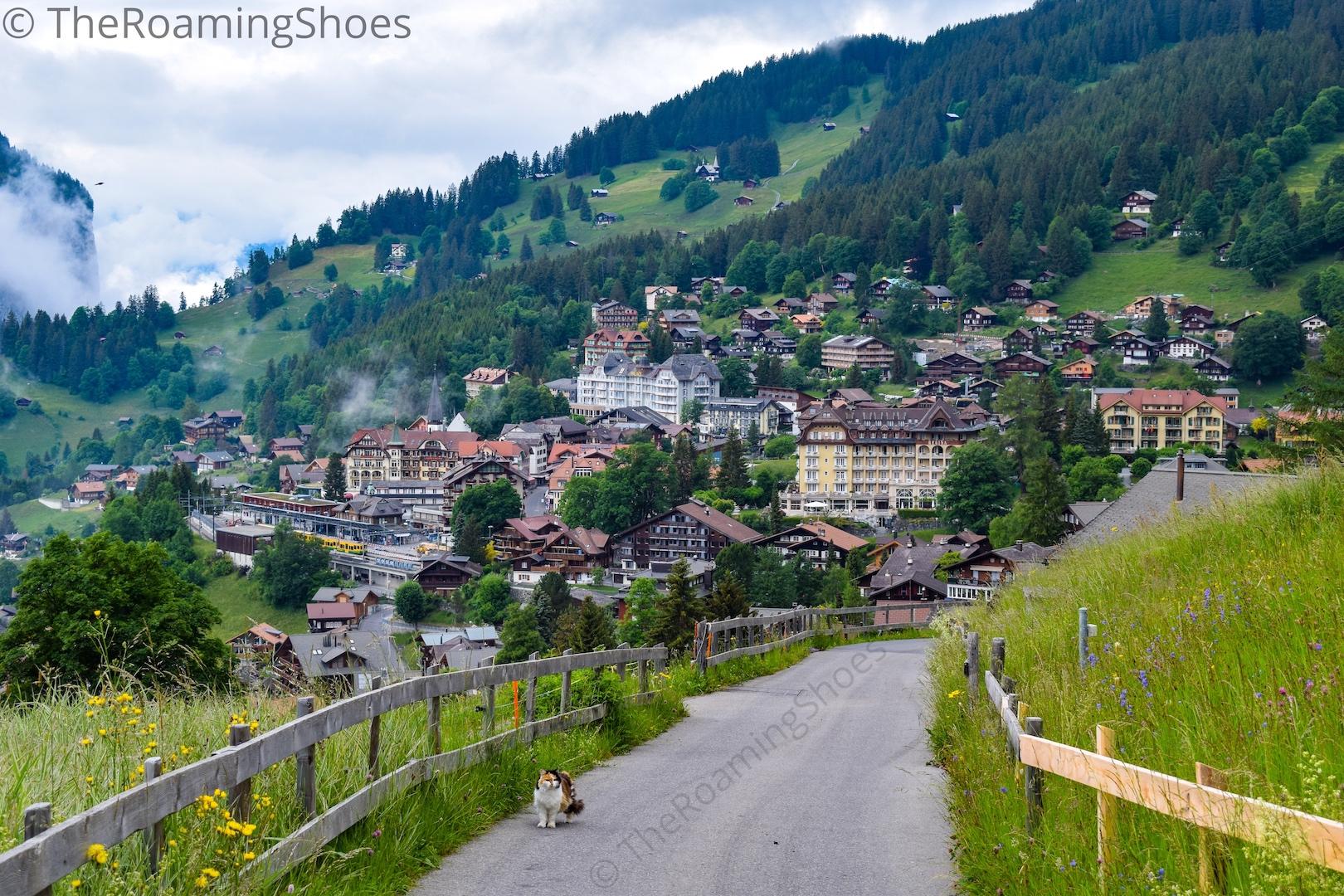 Wengen Village